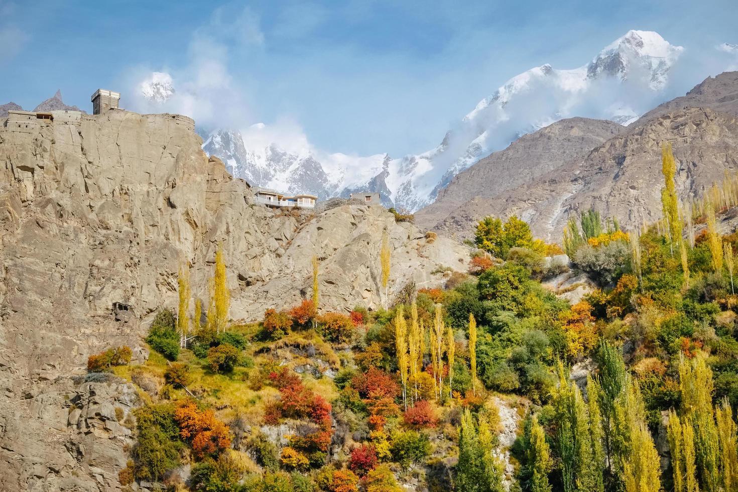 buntes Laub in Karakoram Bergen foto