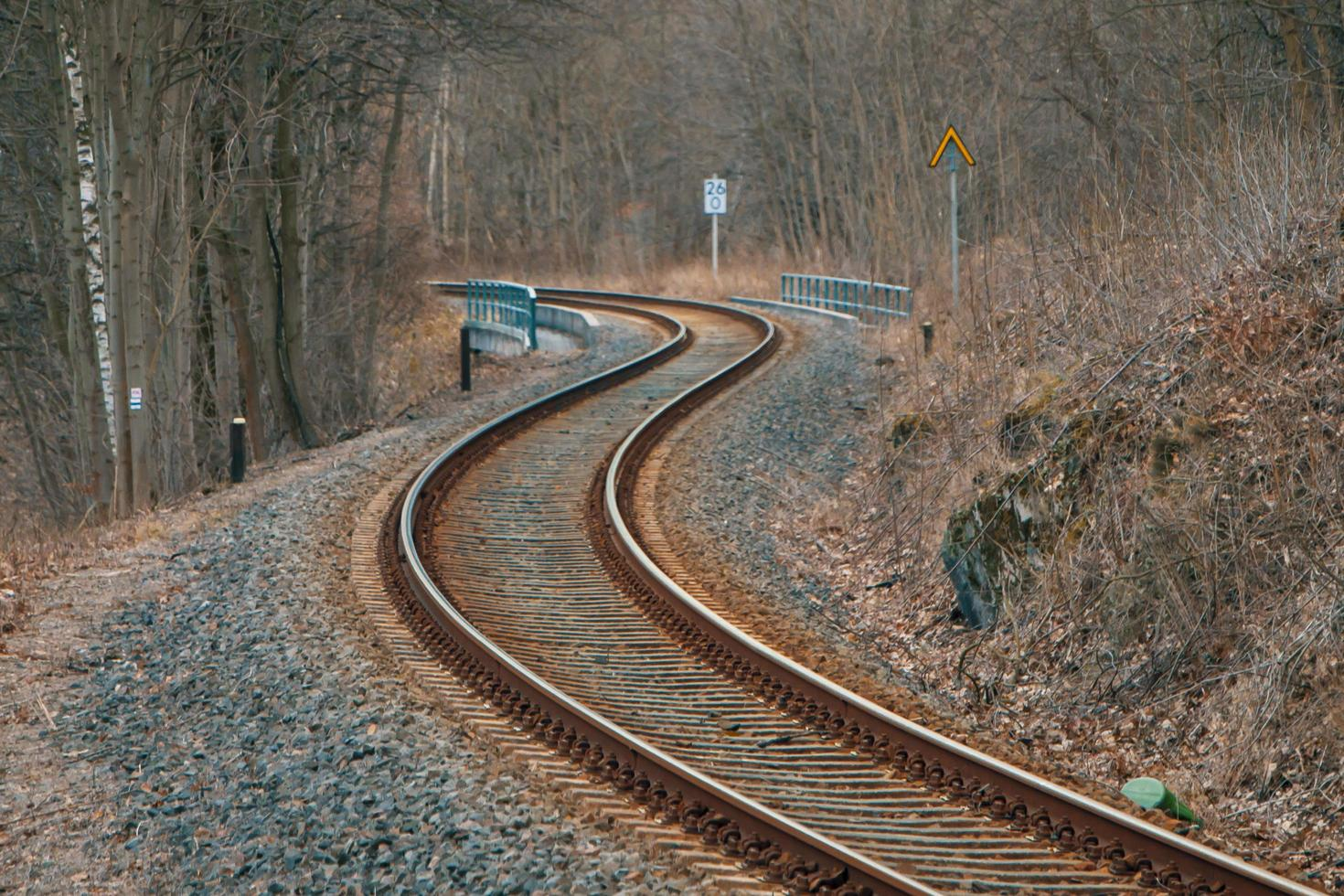 Eisenbahnschienen in einem Wald foto