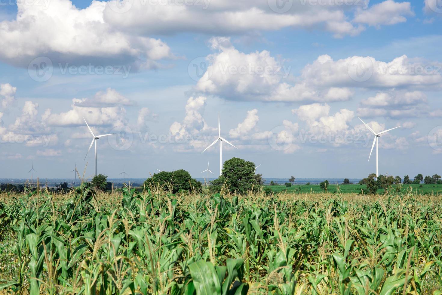 Windkraftanlage für alternative Energie auf Hintergrundhimmel auf Maniok foto