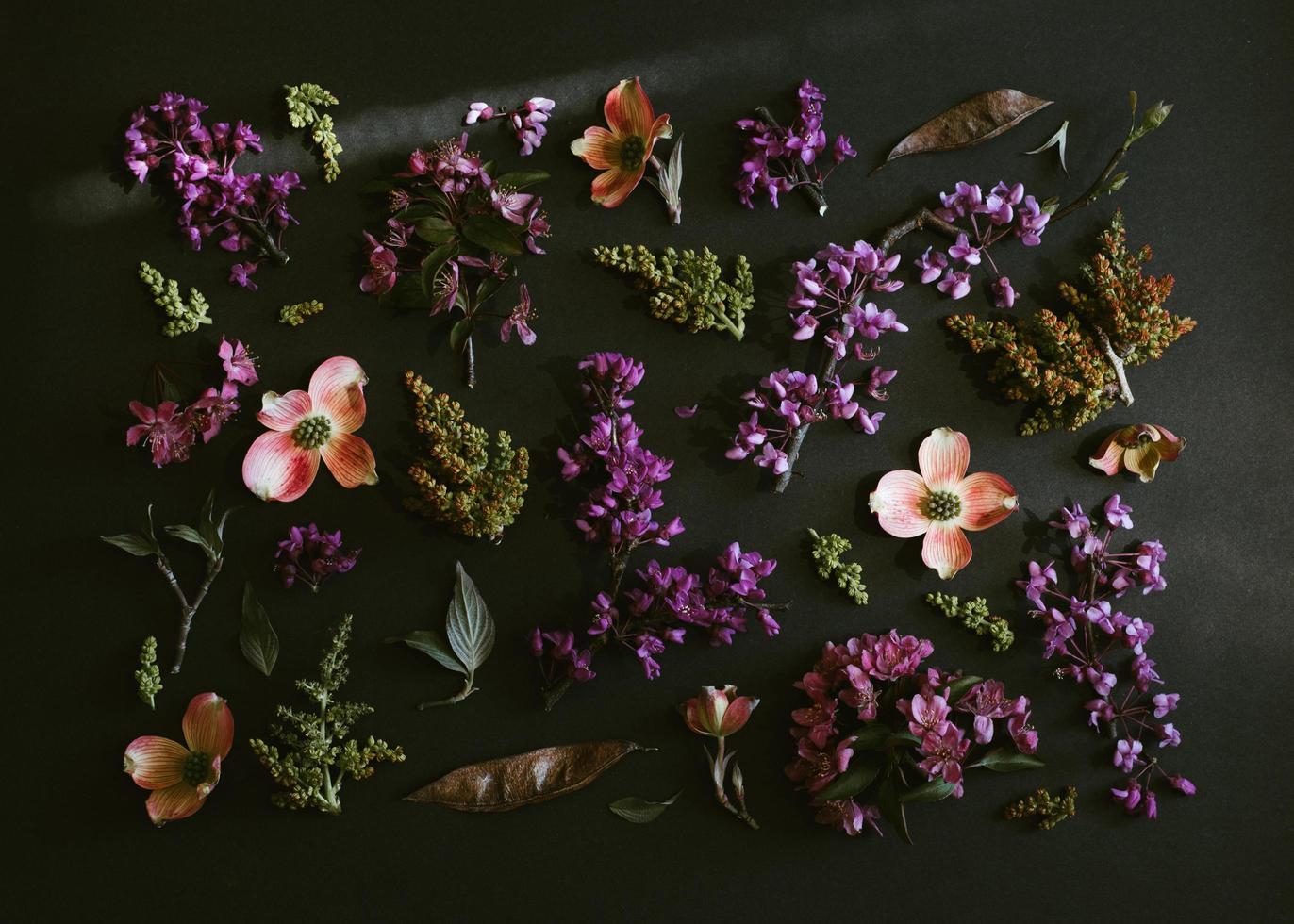 lila und weiße Blüten foto
