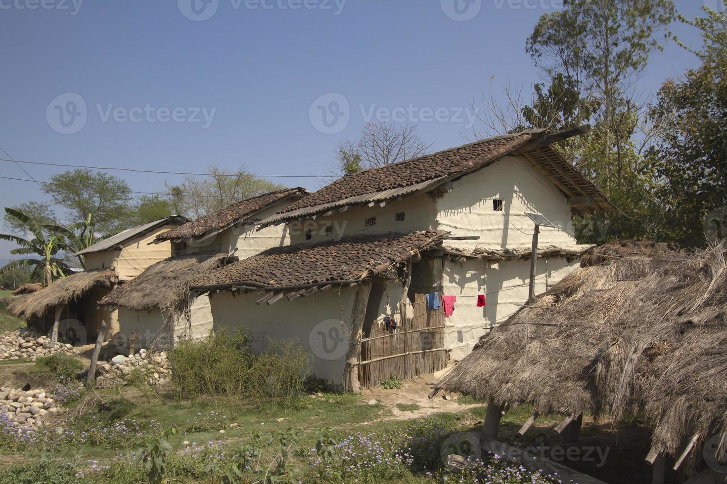 traditionelle taru häuser in terai, nepal foto