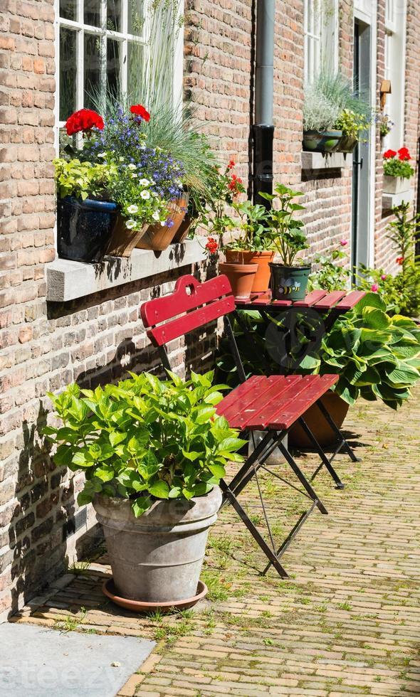 Knospen- und Blütenpflanzen in Töpfen foto