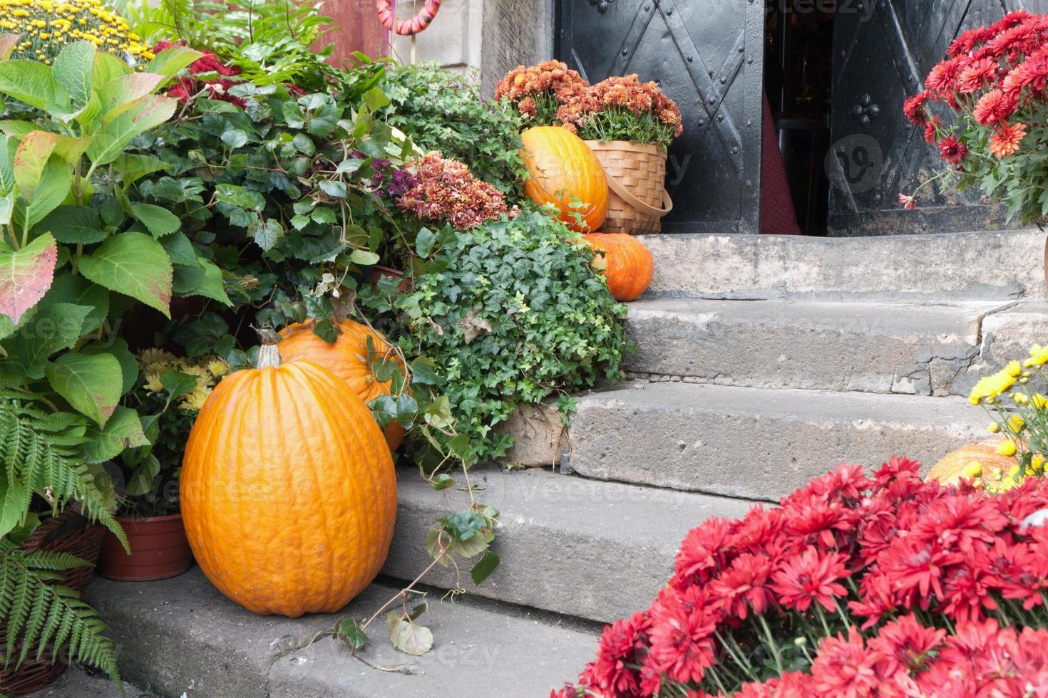 Komposition an Halloween an der Schwelle foto