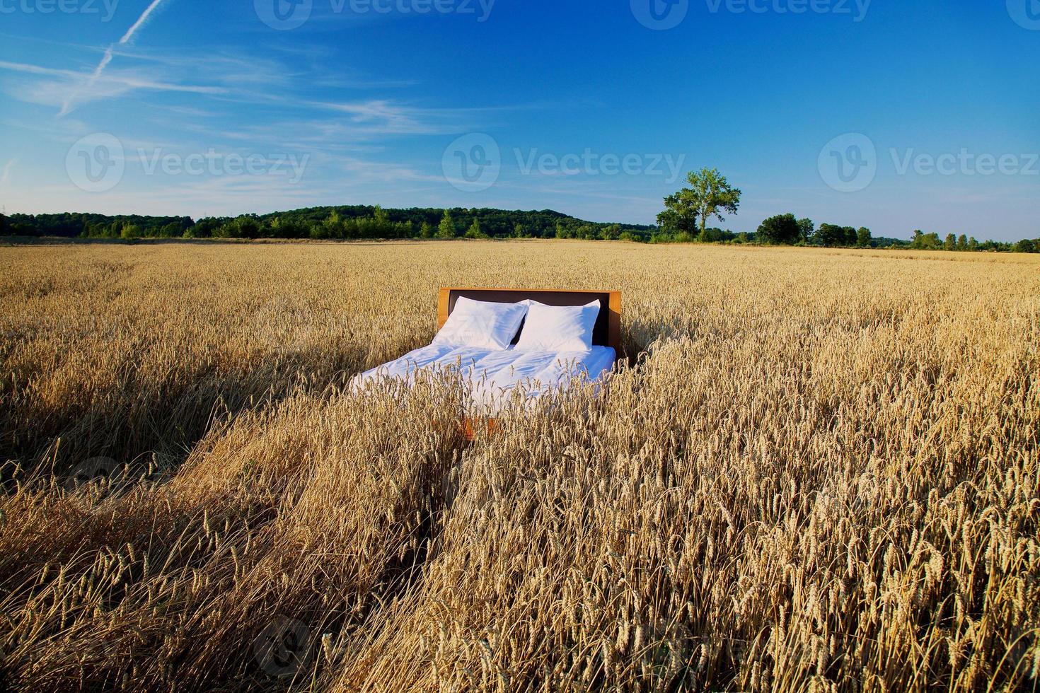 Bett in einem Getreidefeld - Konzept des guten Schlafes foto