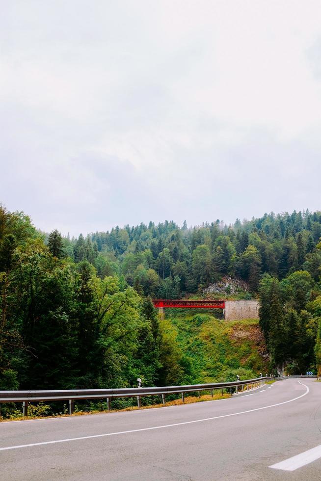 Eisenbahnbrücke zwischen Bäumen neben der Straße foto