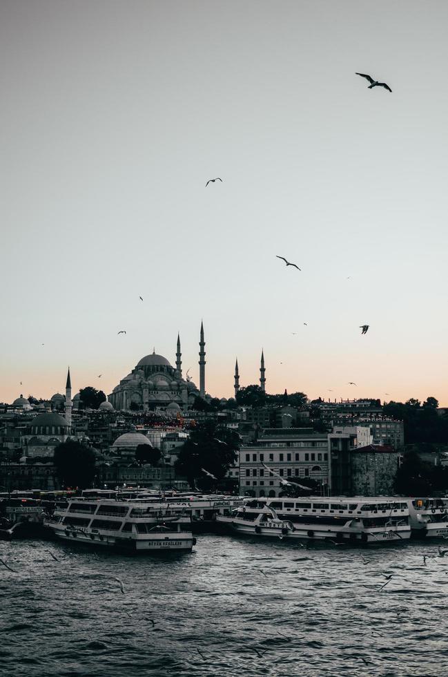 Vögel und Schiffe am Dock bei Sonnenuntergang foto