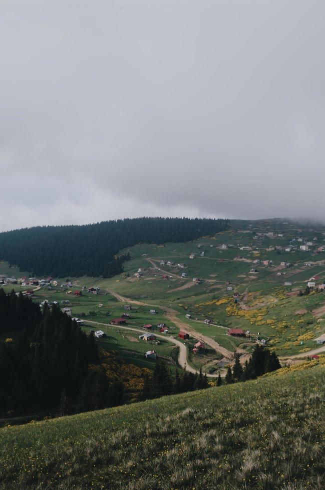 Luftaufnahme von Wald und Häusern unter bewölktem Himmel foto
