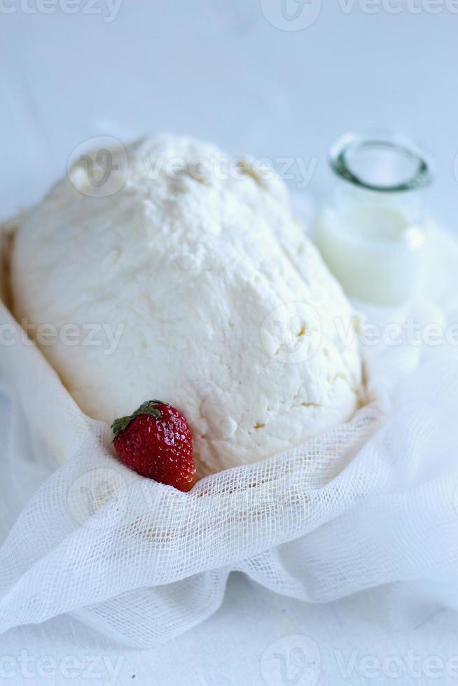 Milchprodukte: Quark, Käse, Milch foto