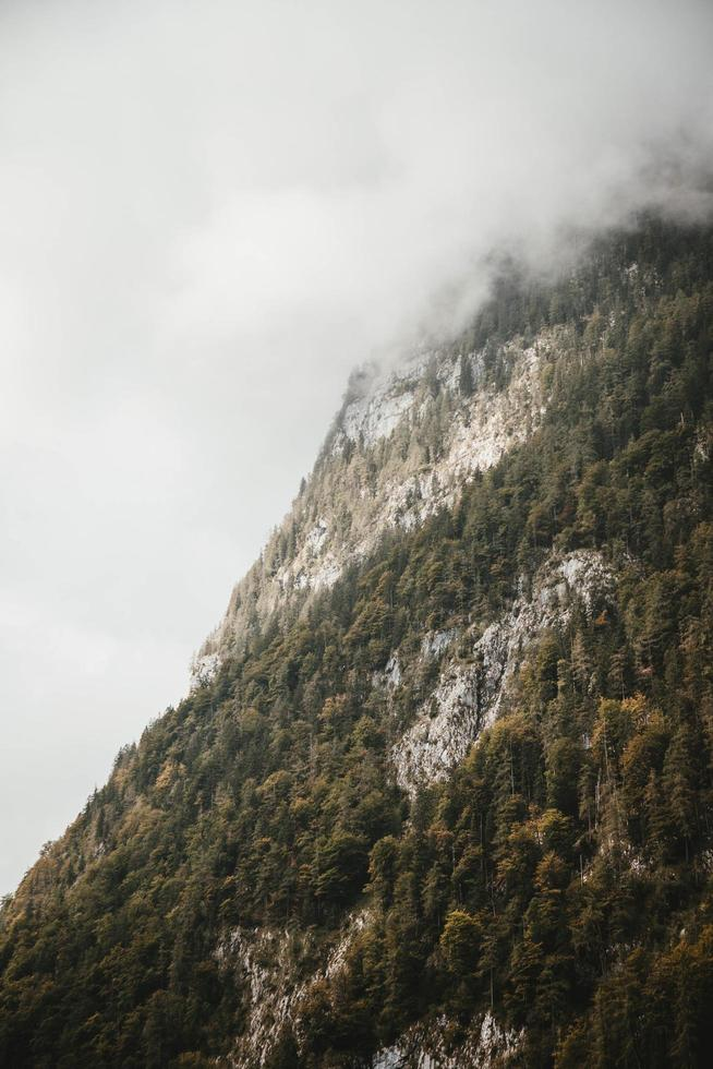 Landschaftsfoto von Berg und grünen Bäumen foto