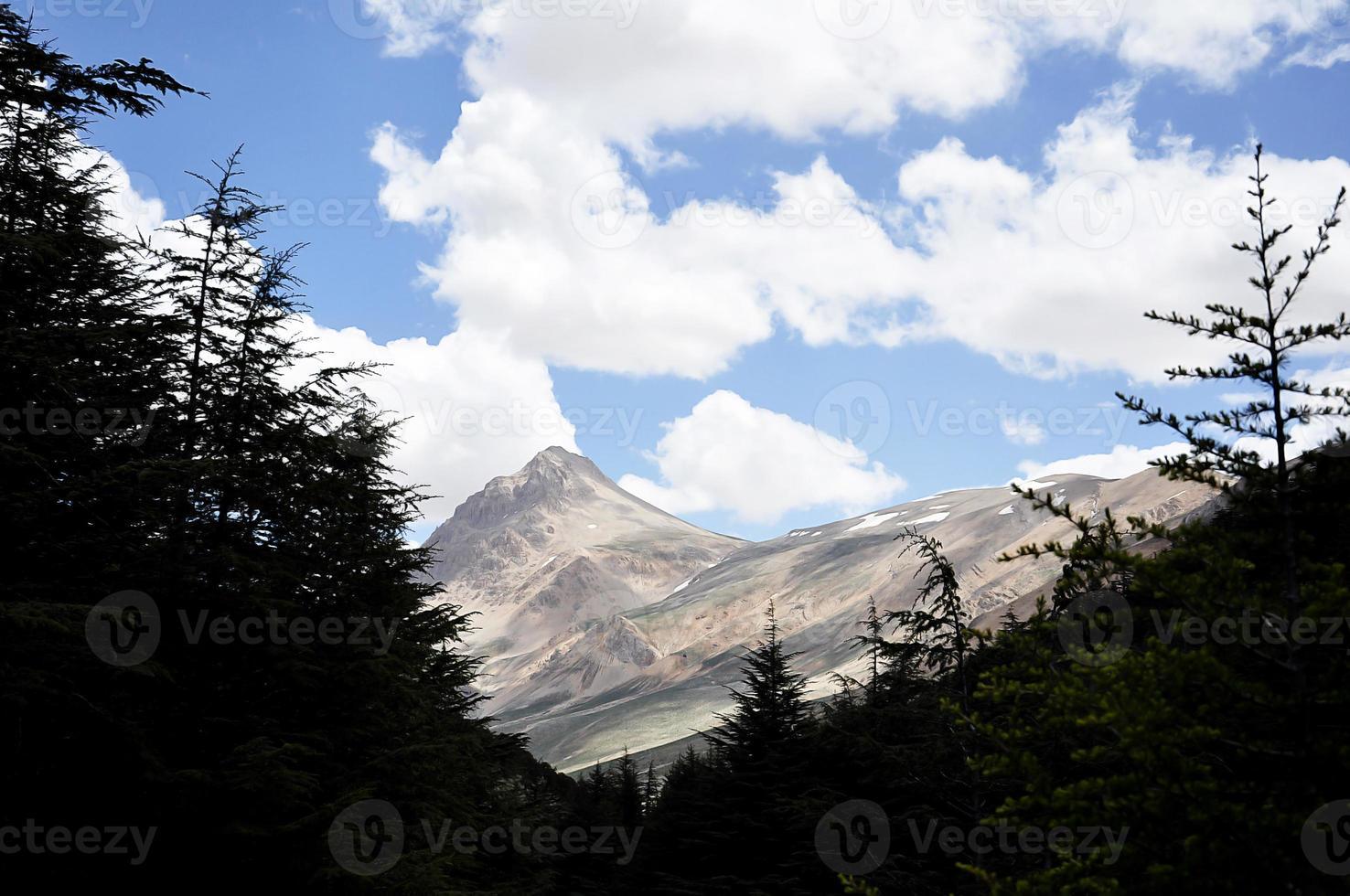 Berg und Wald foto