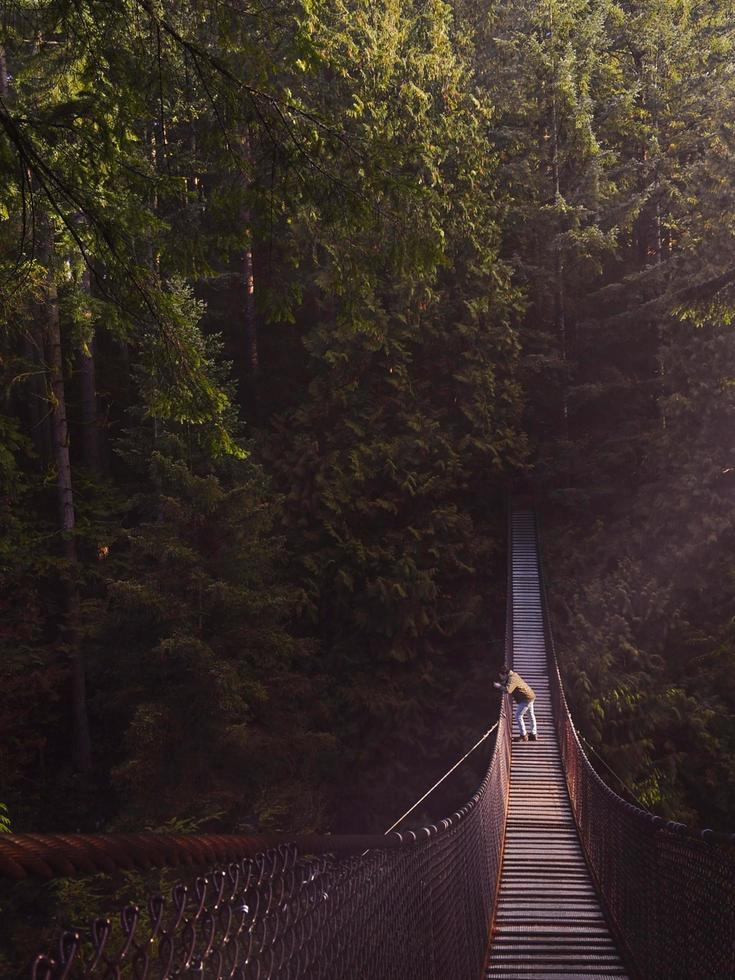 Person, die auf brauner Brücke steht foto