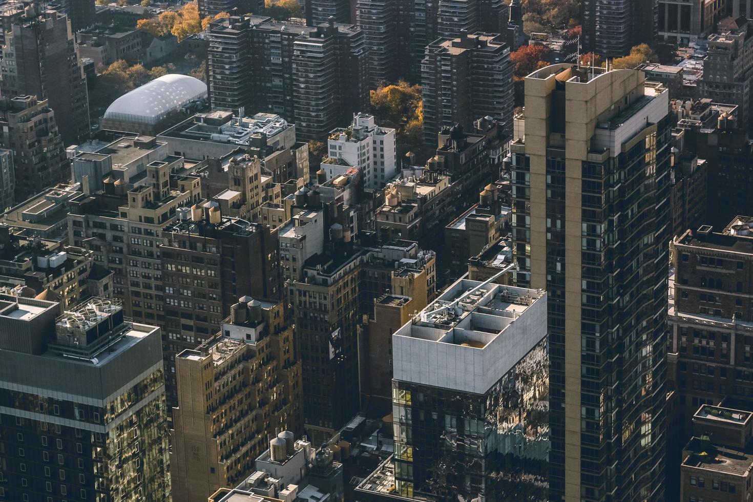Stadt tagsüber foto