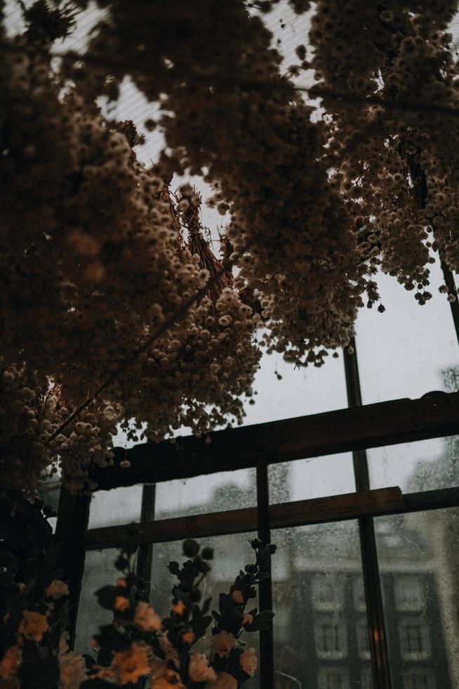 getrocknete braune Blätter foto