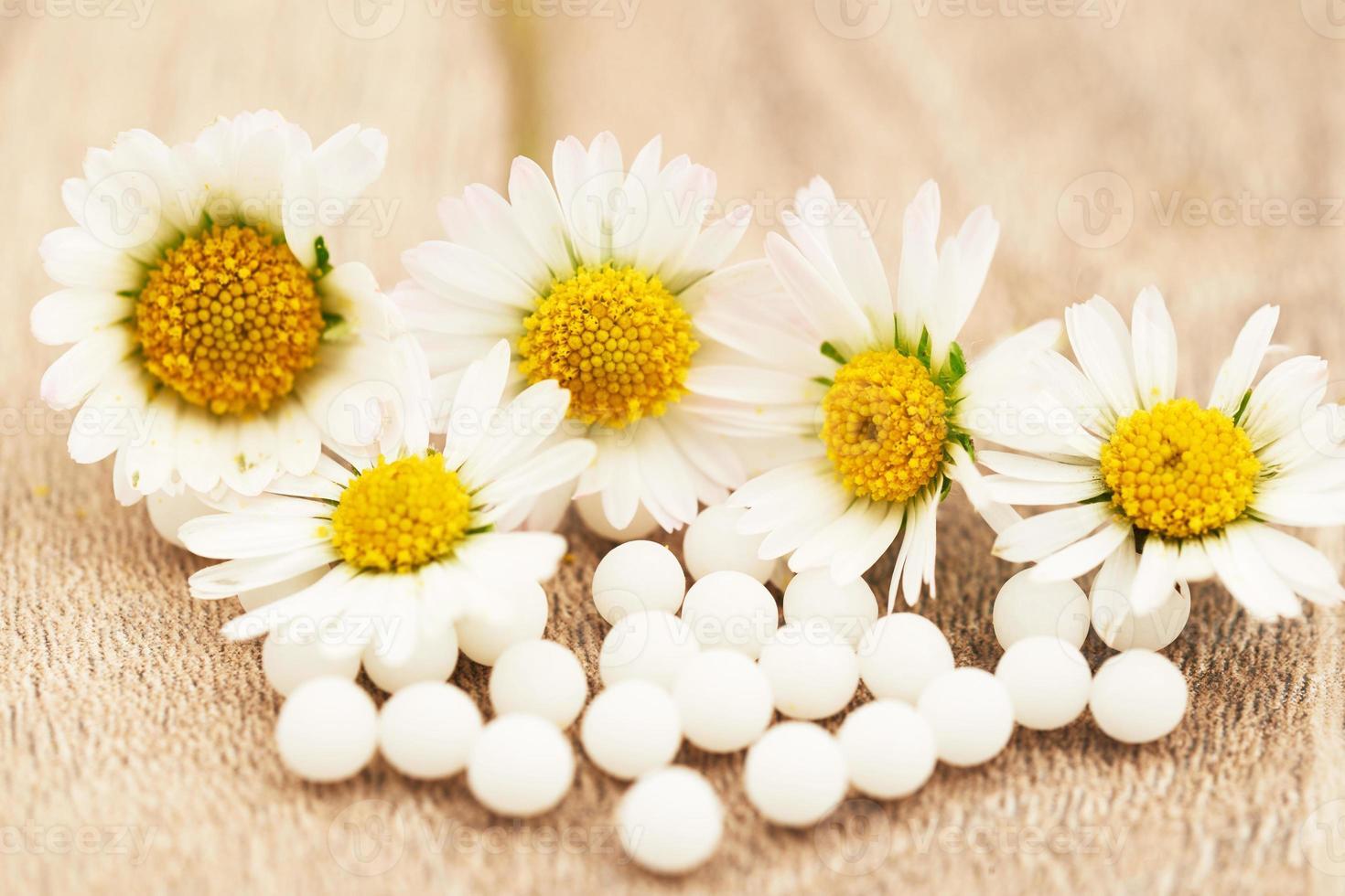 homöopathische Kügelchen und Gänseblümchen foto