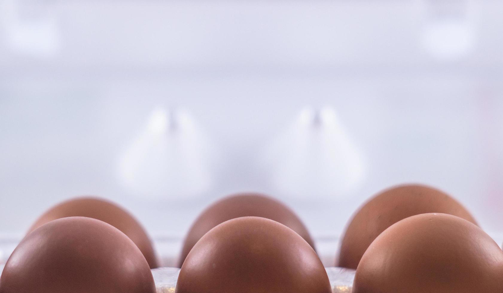 Nahaufnahme von sechs Eiern foto