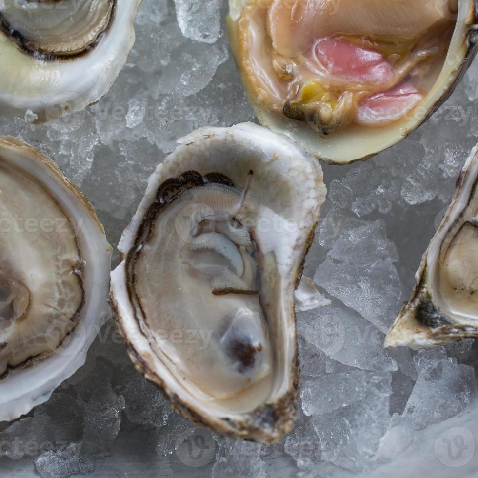 Vielzahl von frisch geschälten rohen Austern foto