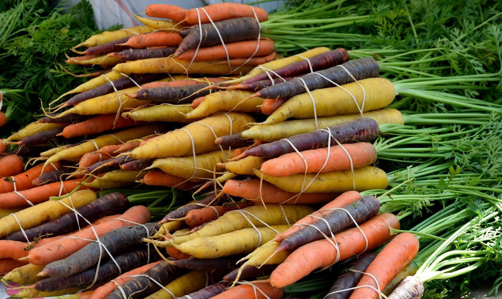 Haufen Karotten foto