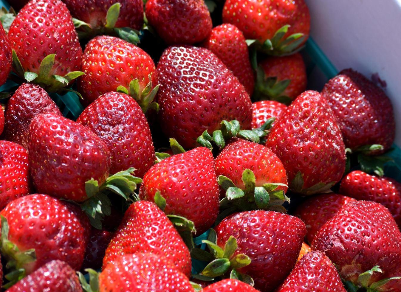 frische, leckere Erdbeeren foto