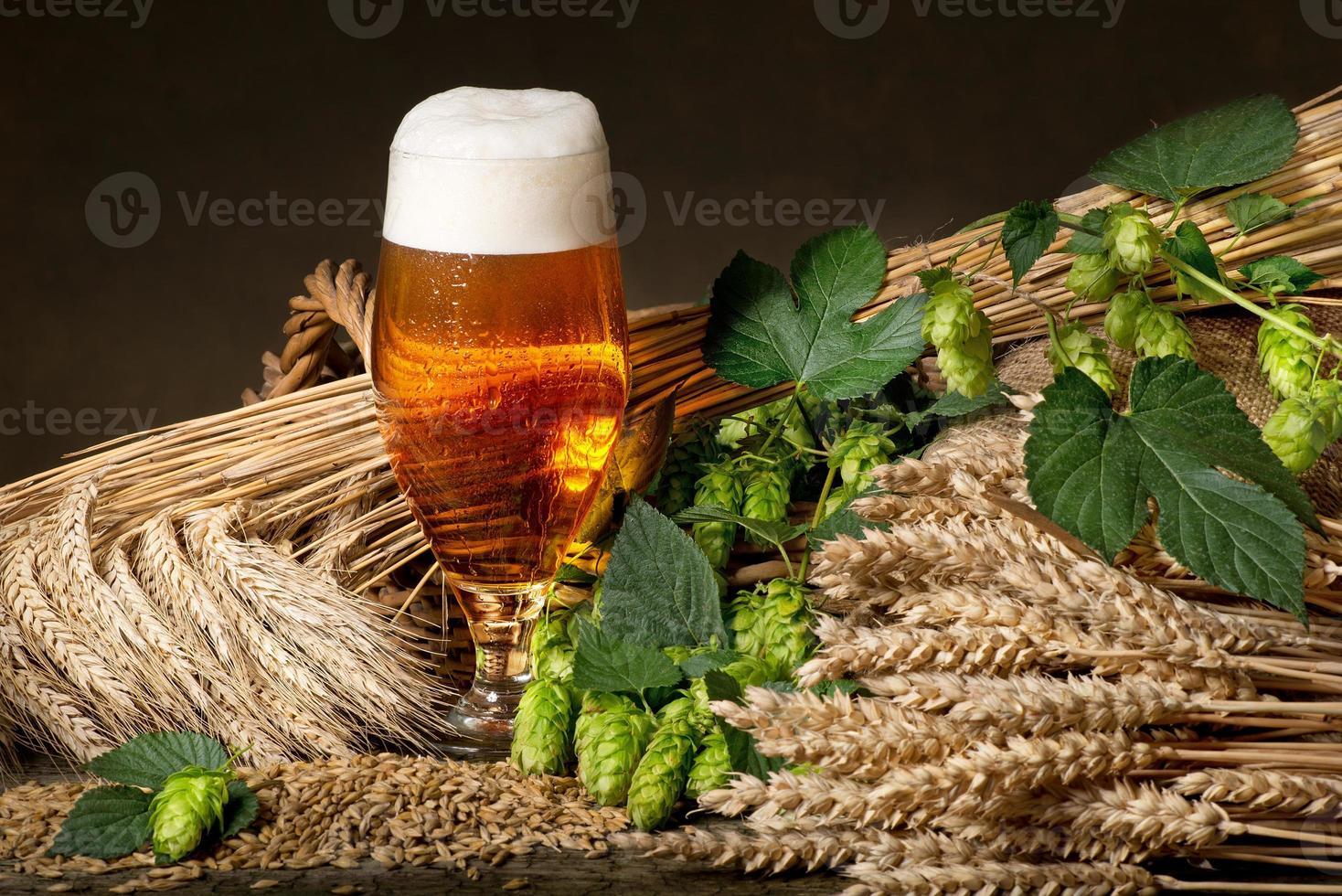 Bier mit Hopfen und Gerste foto