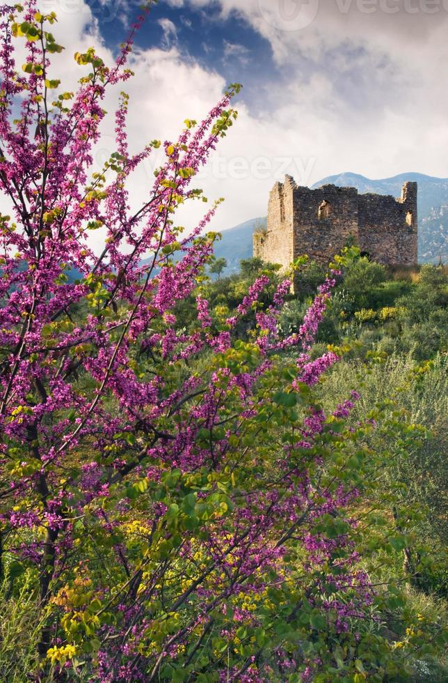 Ruinen eines alten Turms in ländlicher Umgebung foto