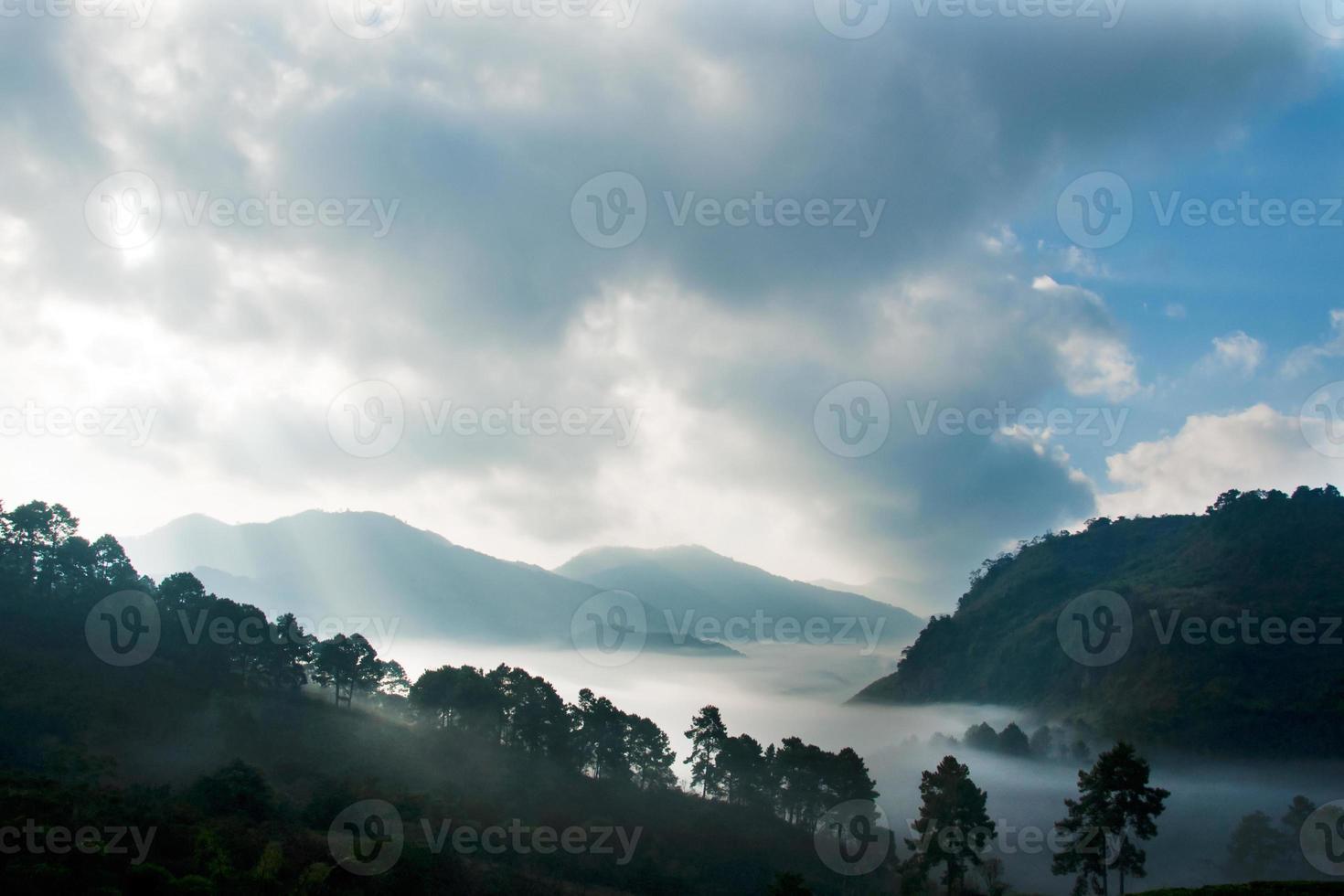 Berg mit Nebellandschaft, doi ang khang, Thailand foto