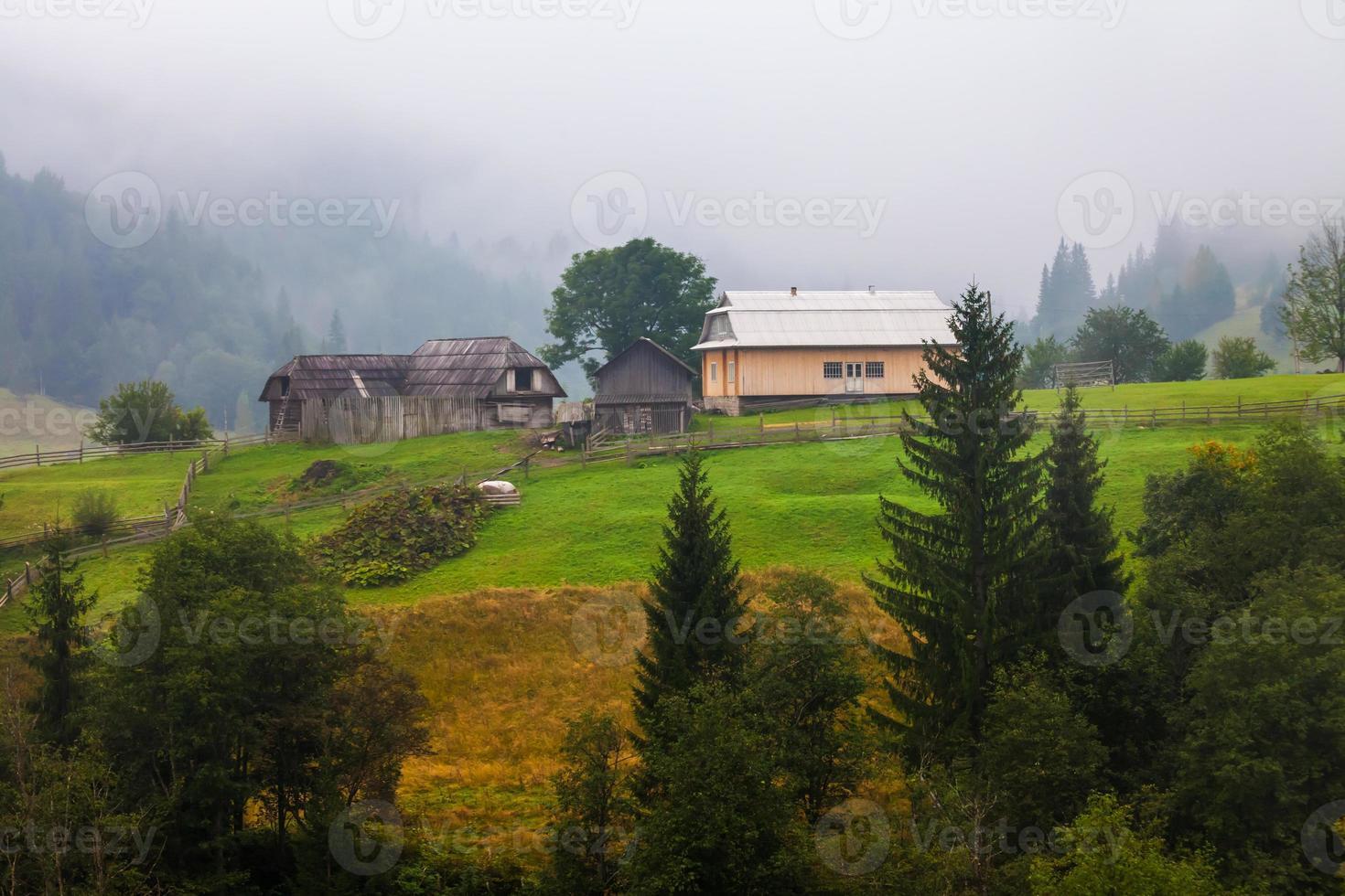schönes Holzhaus auf einem grünen Hügel foto