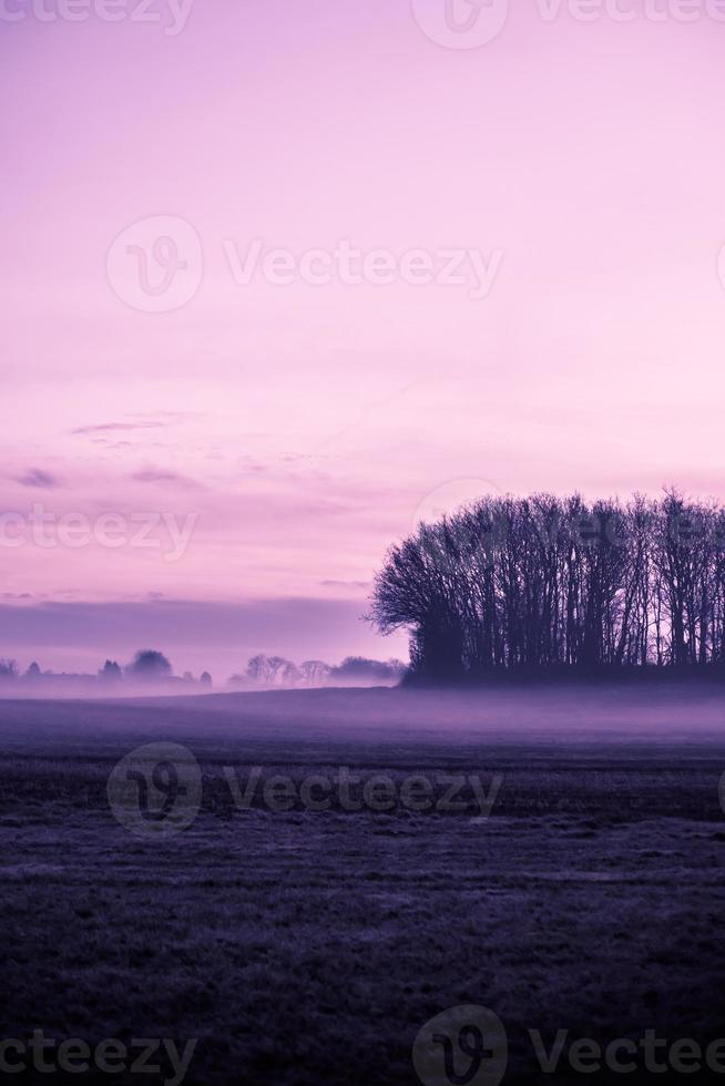 Morgennebel foto
