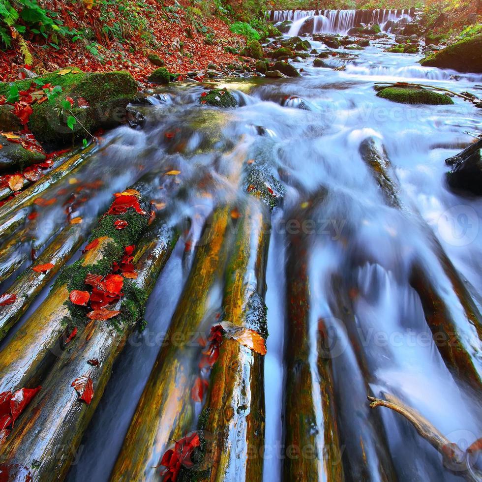 schneller Gebirgsfluss im Herbst foto