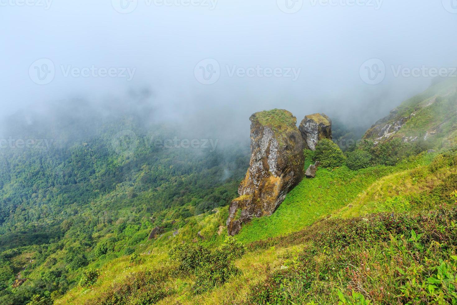 großer Stein im Nebel foto