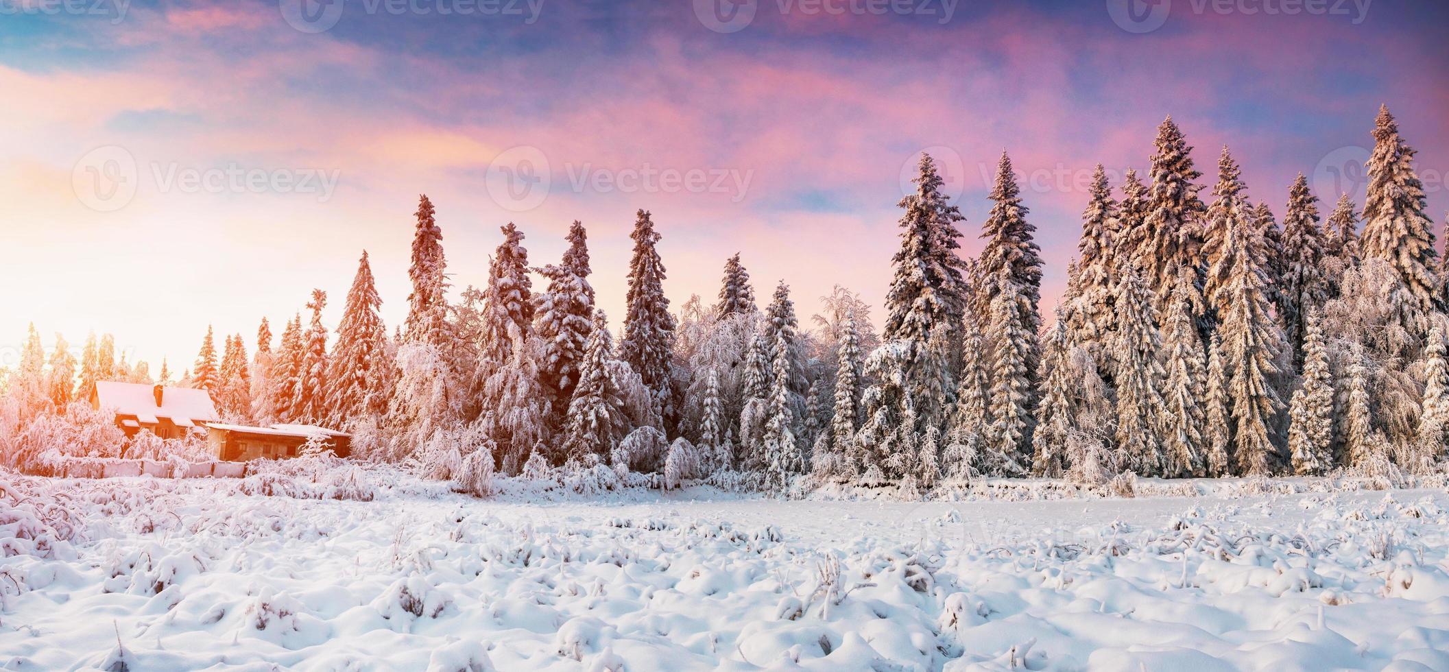 Berge Karpaten foto