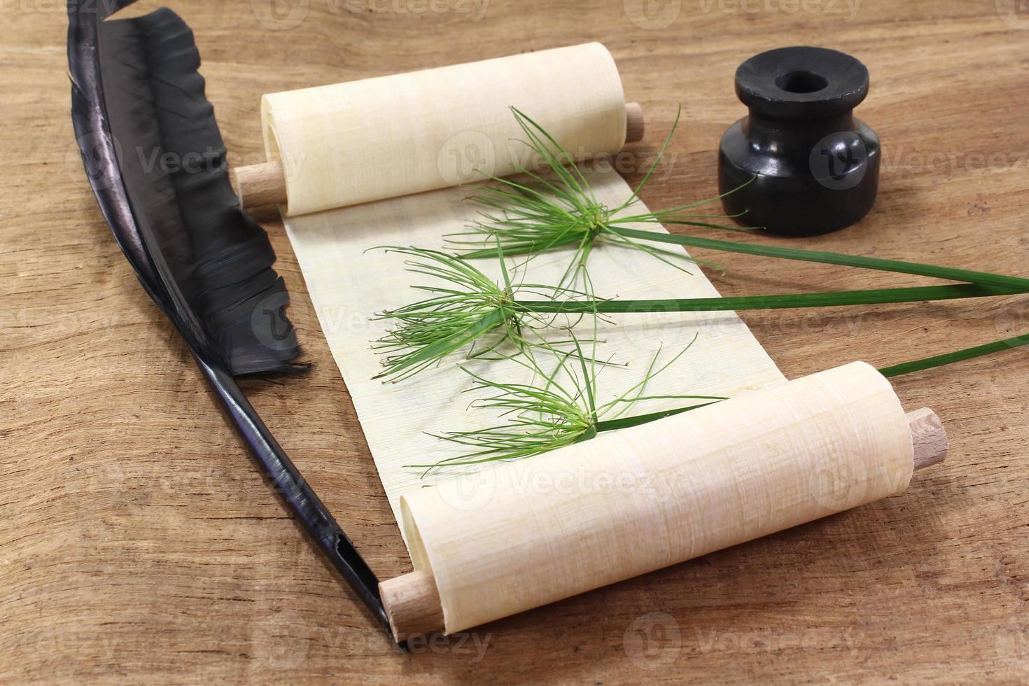 Papyrusrolle mit Pflanze foto