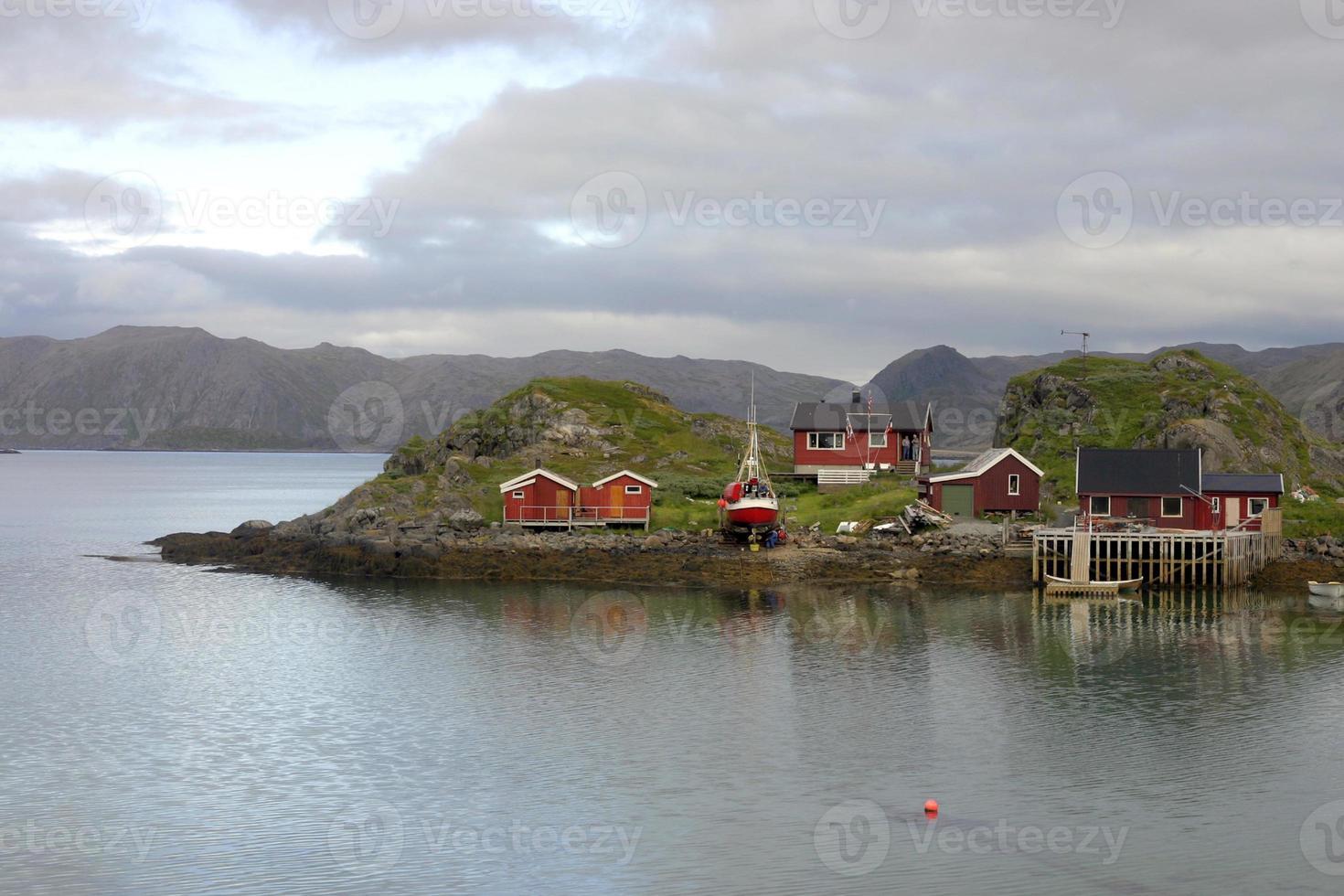 Norvegie foto