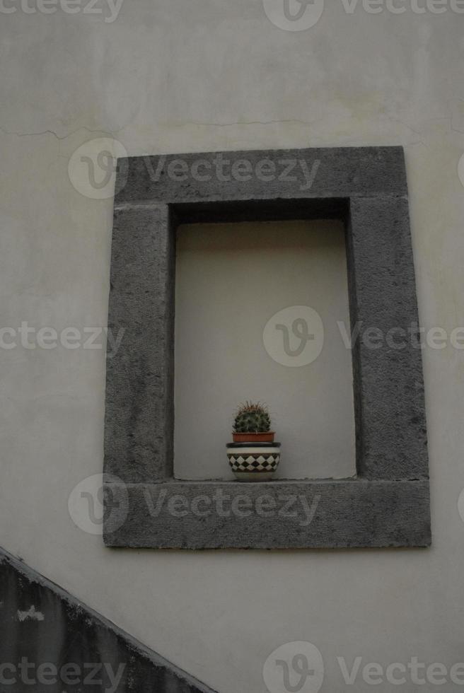 Kaktus auf einem falschen Fensterbrett foto
