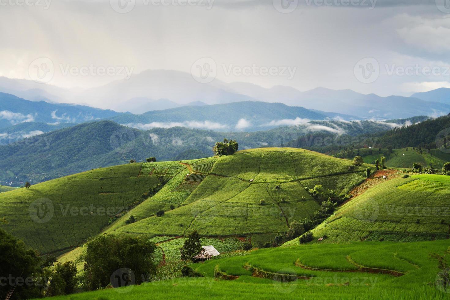 Feld im Mae-Jam-Dorf foto