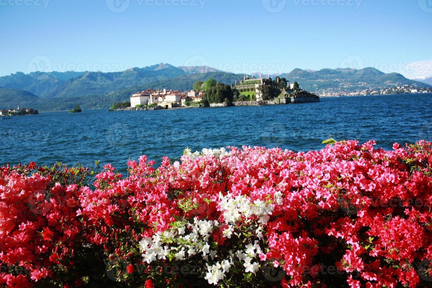 Isola Bella unter blauem Himmel Stresa Waterfront blüht foto