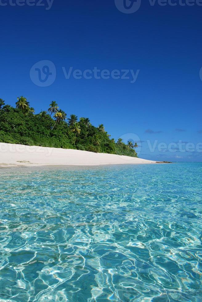 atemberaubender exotischer Strand einer abgelegenen Fidschi-Insel foto