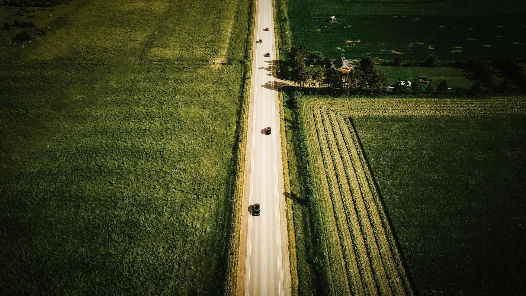 Luftaufnahme der grünen Wiese foto
