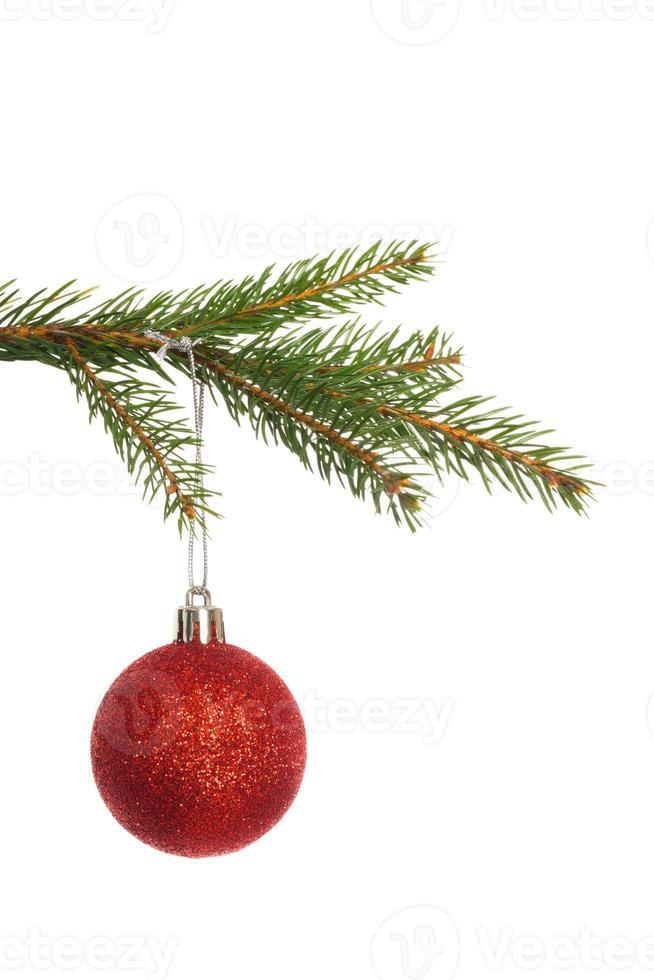 rote Weihnachtsdekoration, die vom Zweig hängt foto