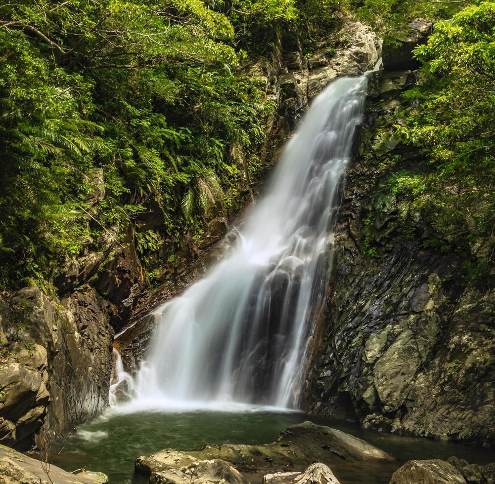 Hijio fallen in Okinawa foto