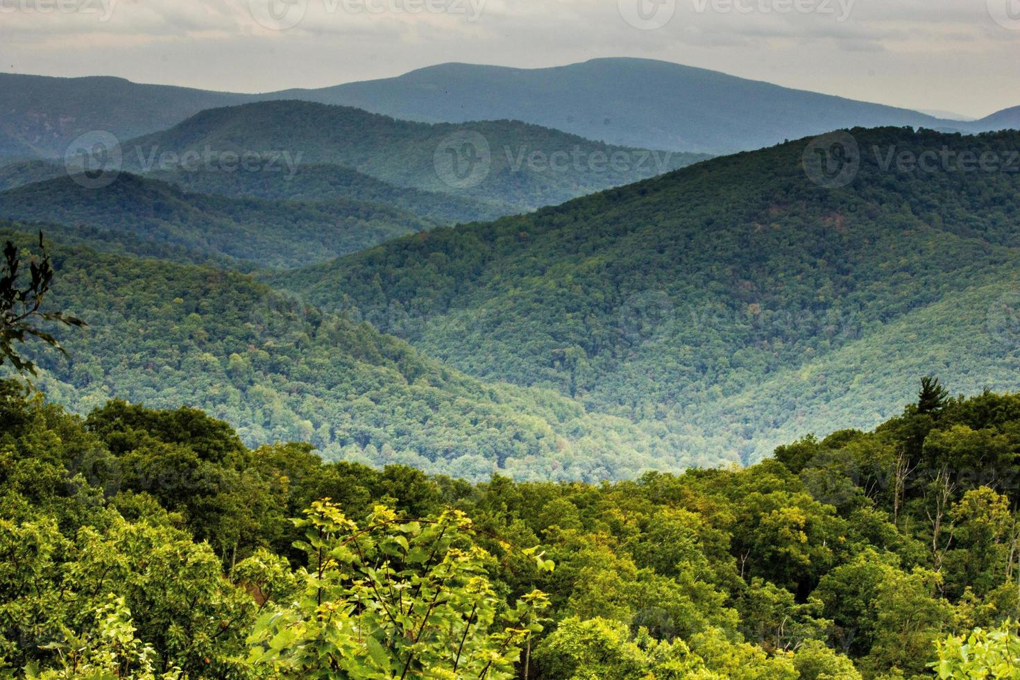 Shenandoah Nationalpark, Virginia foto