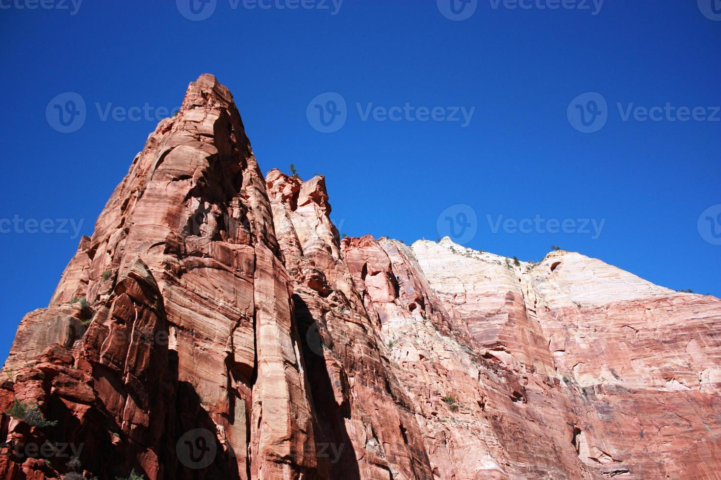Rote Felsenorgel im Zion-Nationalpark in Utah, USA foto