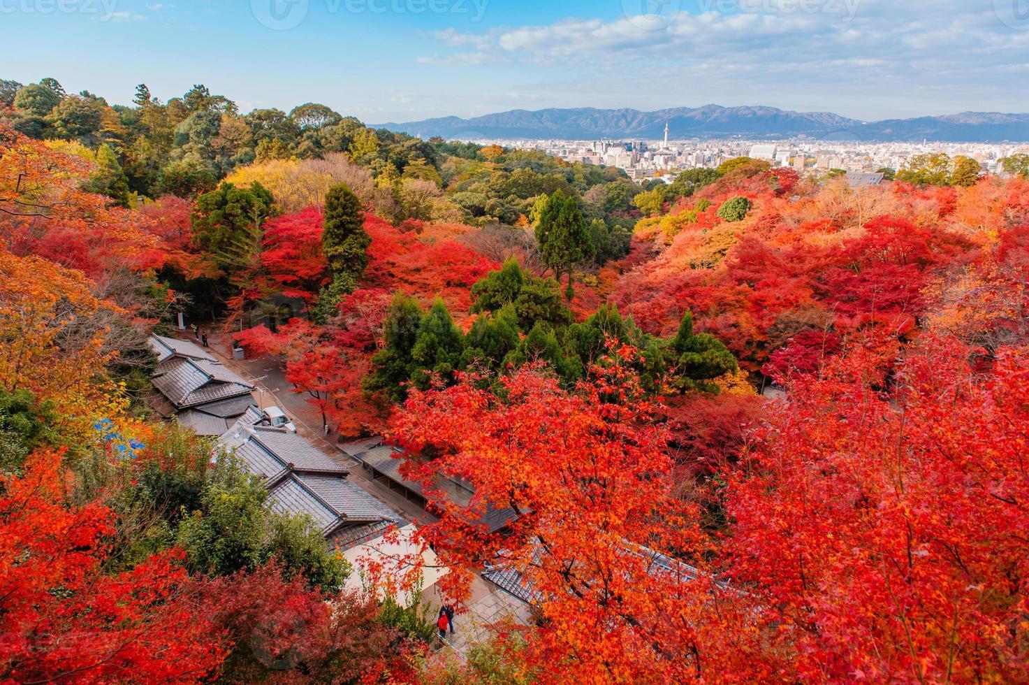 japanischer Garten mit herbstlichen Blättern foto