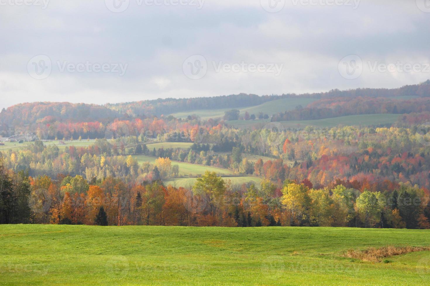 Herbstzeit foto