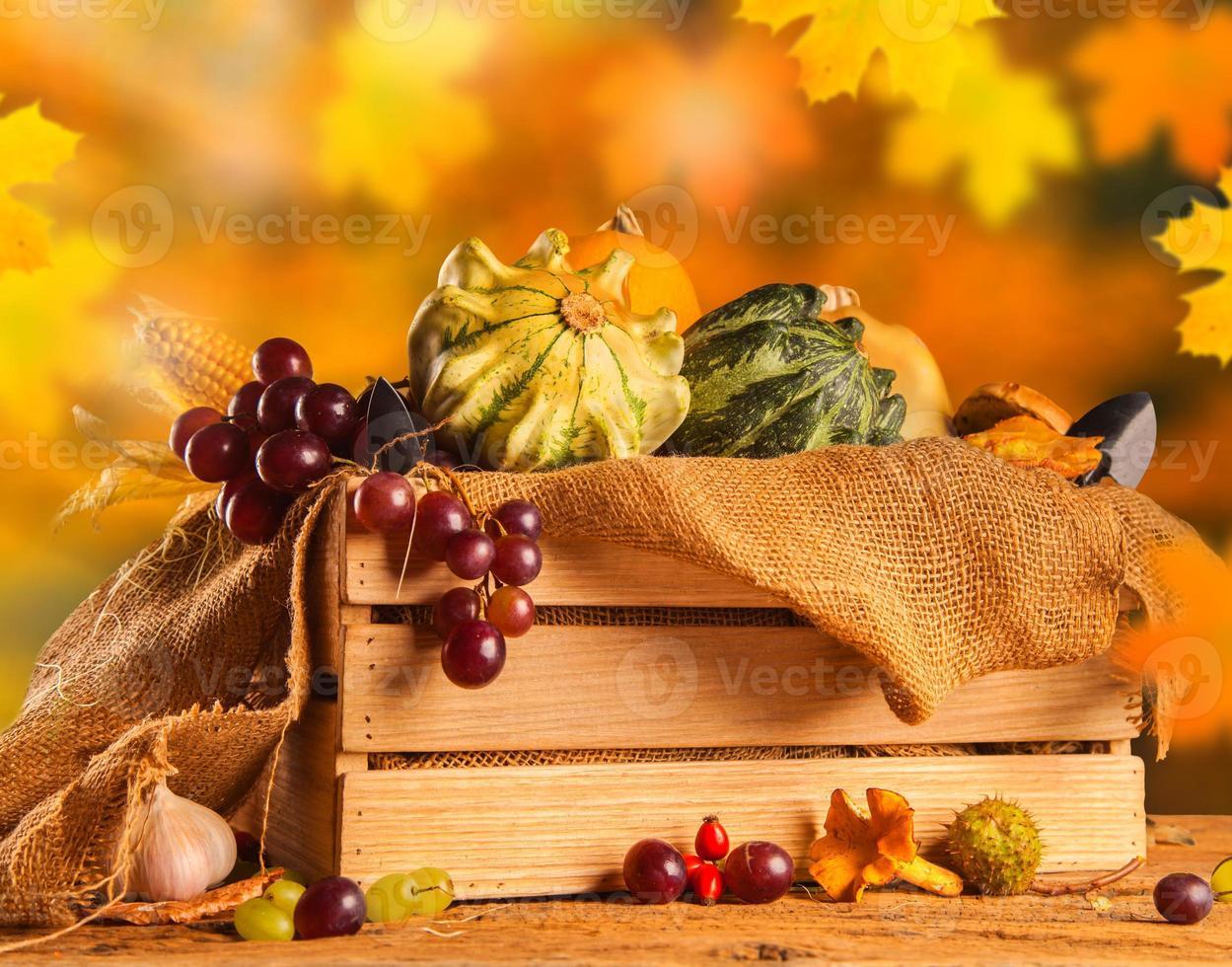Herbstkonzept foto