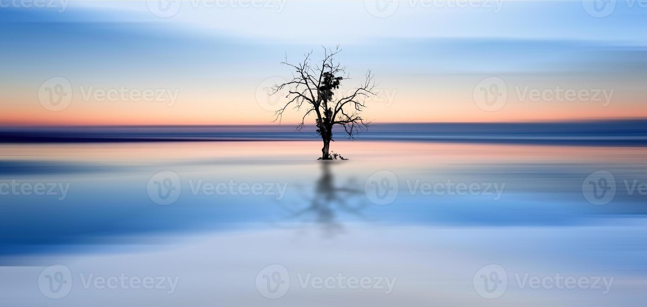 Konzeptbild des Baumes, der in stillen Gewässern reflektiert wird foto