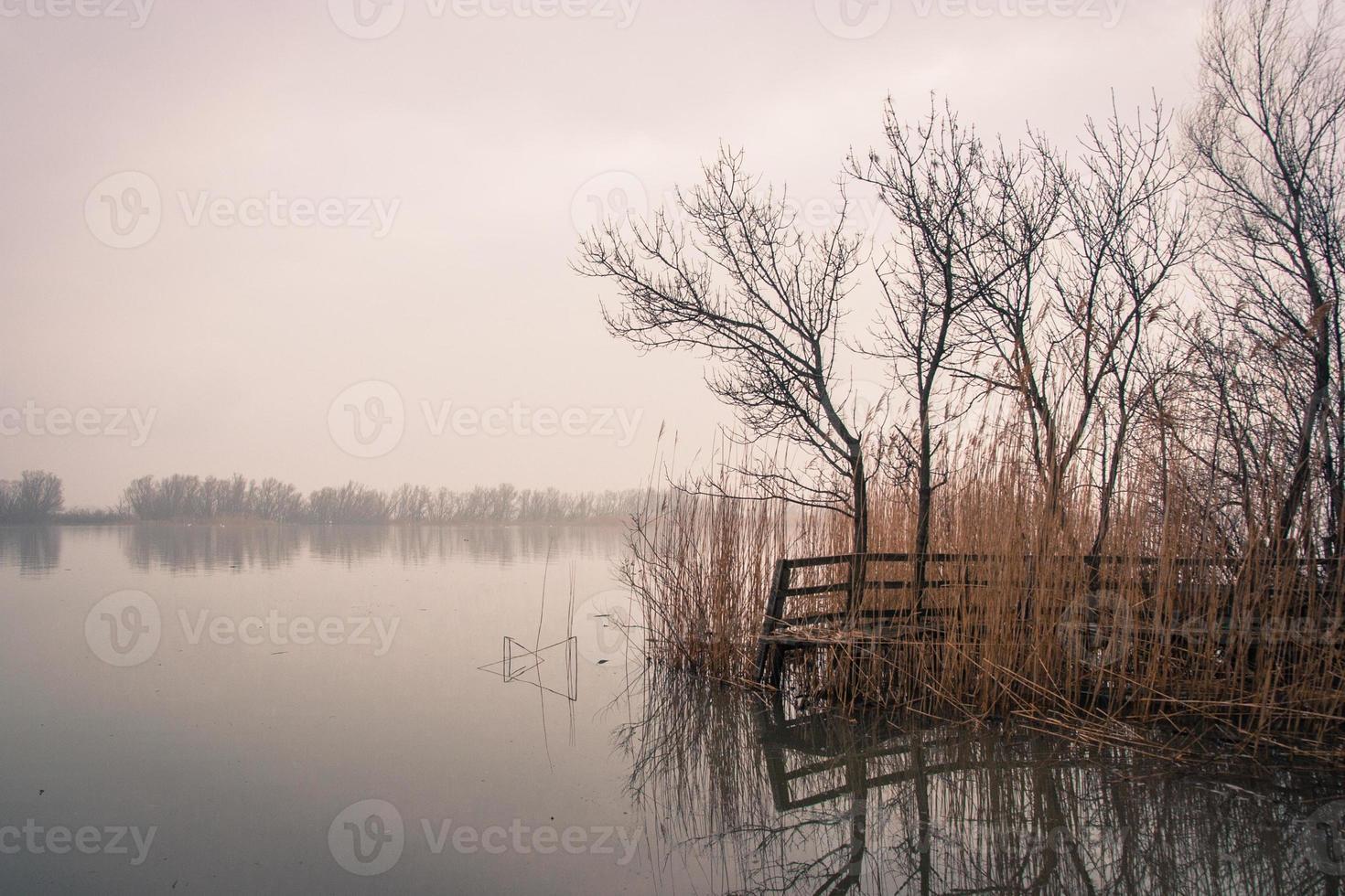 herbstliche Idylle an der Donau foto