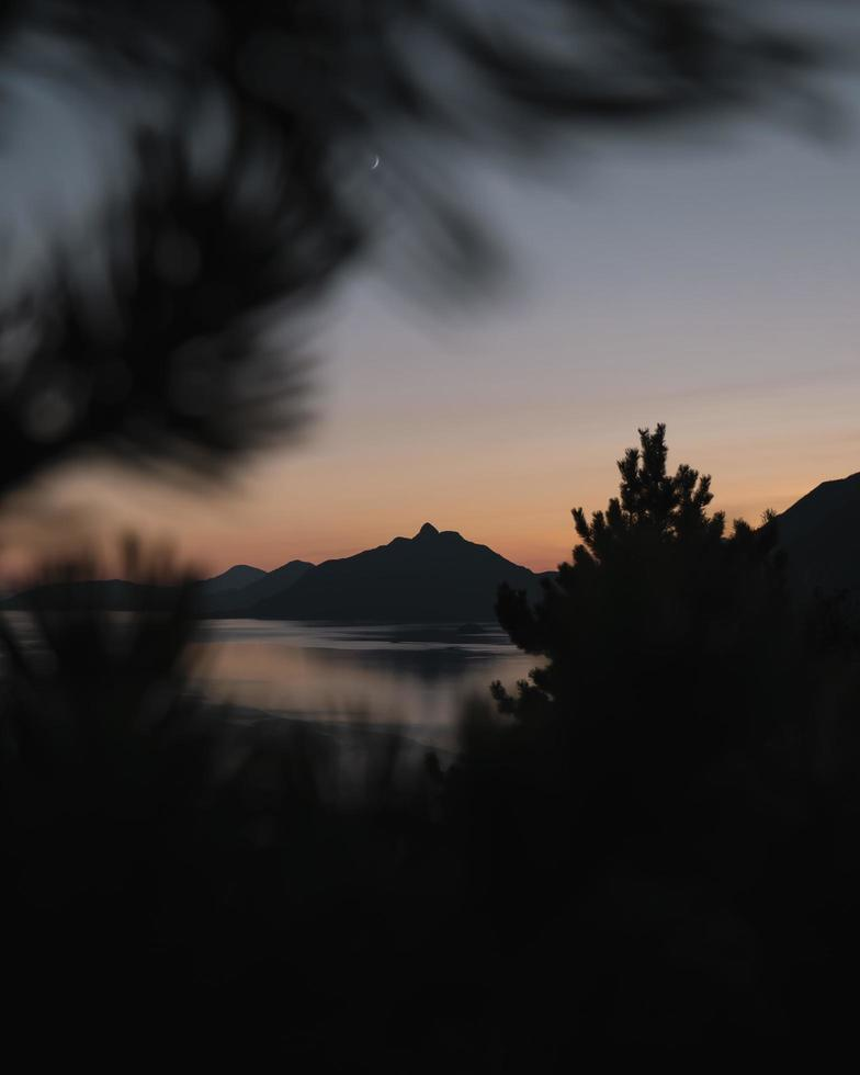 Silhouette von Bäumen und Sonnenuntergang. foto