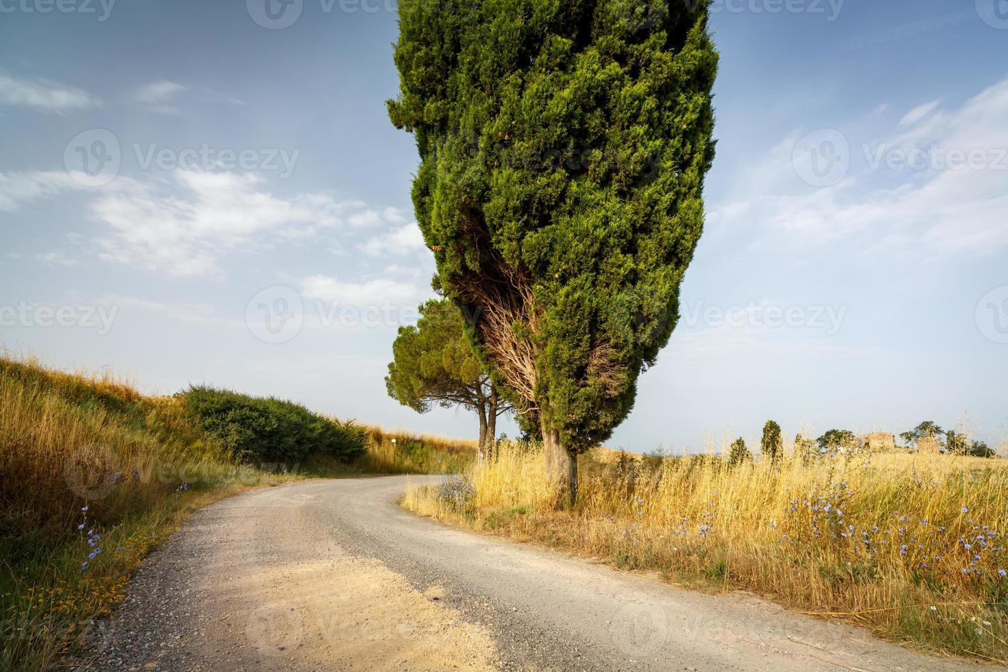 Landschaft der Toskana foto