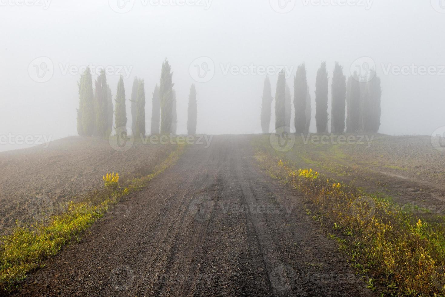 Toskana - Landschaftspanorama Hügel und Wiese Toscanana Italien foto