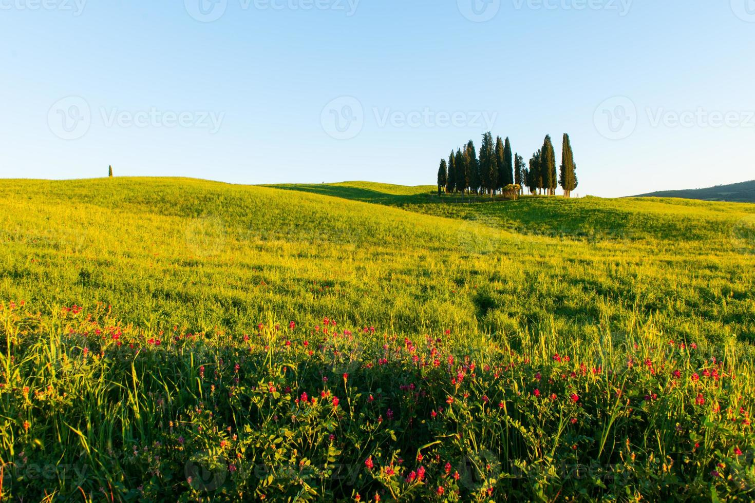 Toskana Landschaft in der Nähe von Pienza, Val d'orcia Italien foto